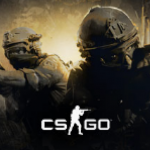 Counter-Strike:Global Offensive(CS:GO)